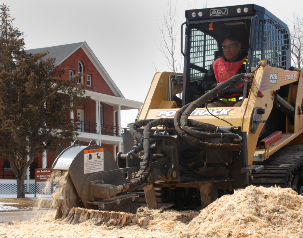 this image shows lot clearing and stump removal